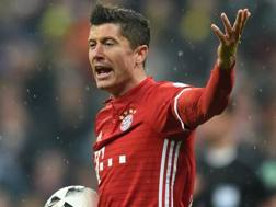 Robert Lewandowski, 28 anni. AFP