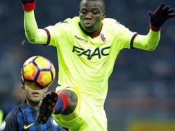 Donsah, 21 anni, con la maglia del Bologna.