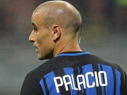 Rodrigo Palacio, 35 anni. GETTY
