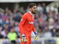 Ciprian Tatarusanu, 31 anni, 44 presenze con la Fiorentina la scorsa stagione. Getty Images