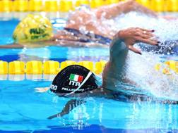 Federica Pellegrini, 28 anni , in azione nei 100 sl GETTY
