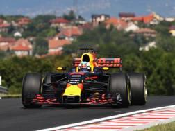 Daniel Ricciardo in azione in Ungheria. Getty