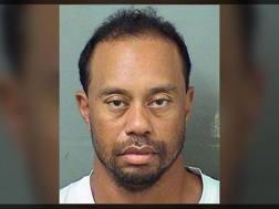 La foto segnaletica di Tiger Woods.