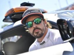 Fernando Alonso, 36 anni, ha disputato sinora 282 GP, vincendone 32. E' stato campione del mondo 2005 e 2006 con la Renault AP
