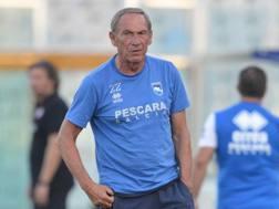 Zdenek Zeman,70 anni. LaPresse