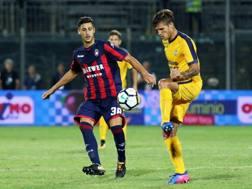 Madnragora, Crotone, contende il pallone a Bruno Zuculini, Verona. Ansa