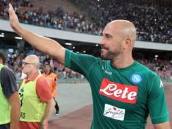 Pepe Reina, 34 anni, al Napoli dal 2013-14. Getty