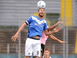 Andrea Caracciolo, 35 anni, capitano del Brescia. Lapresse