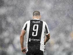 Gonzalo Higuaín, 29 anni, 66 presenze totali in Champions GETTY IMAGES