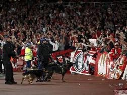 Tifosi del Colonia all'Emirates Stadium. Afp