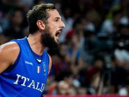 Marco Belinelli, durante gli ultimi Europei di basket. Ciamillo e Castoria