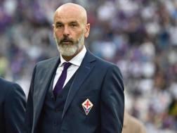 Stefano Pioli, 51 anni, prima stagione sulla panchina della Fiorentina
