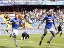 L'esultanza di Duvan Zapata dopo il gol dell'1-0. Lapresse