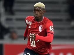 Yves Bissouma, 21 anni, nazionale maliano del Lille. AFP