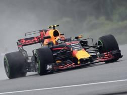 Max Verstappen in azione in Malesia. Afp