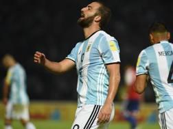 Higuain con la maglia dell'Argentina.