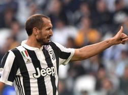 Giorgio Chiellini, 33 anni Getty