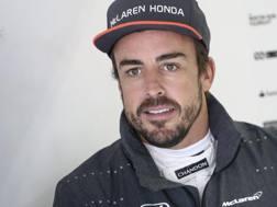 Fernando Alonso resta in McLaren anche nella prossima stagione. Epa