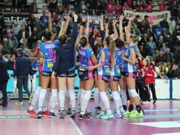 L'esultanza di Novara per la vittoria con Filottrano