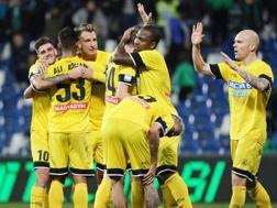 L'Udinese lo scorso anno ha chiuso il suo campionato al 13esimo posto.