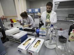 Un'immagine di uno dei laboratori della Rusada. Ap