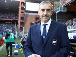 Marco Giampaolo, 50 anni. LAPRESSE