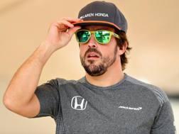 Fernando Alonso. Getty