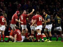 Il Galles esulta a fine match. Reuters