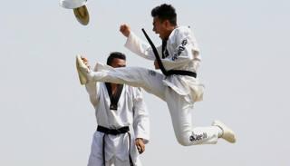 Taekwondo con le stellette