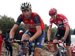 Froome e Nibali alla Vuelta.  Bettini