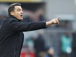 Massimo Oddo, dal 21 novembre allenatore dell'Udinese. LaPresse
