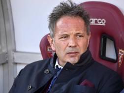 Sinisa Mihajlovic (48), seconda stagione sulla panchina del Torino. LAPRESSE