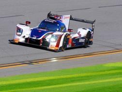 Fernando Alonso nei test della 24 ore di Daytona. Epa