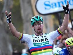 Il successo di Peter Sagan. Bettini