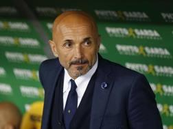 Luciano Spalletti, 58 anni, allenatore Inter. ANSA
