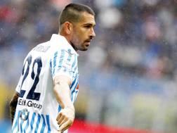 Marco Borriello, 35 anni. Lapresse