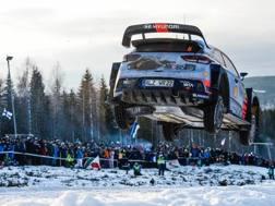 Thierry Neuville in azione in Svezia