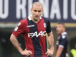 Rodrigo Palacio, 36 anni, attaccante argentino del Bologna. Getty