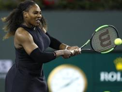 Serena Williams, 36 anni EPA