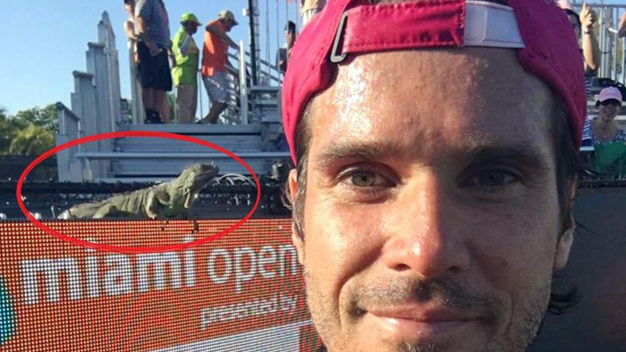 Haas, selfie con... un ospite speciale