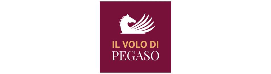 Il Volo di Pegaso: Alla scoperta dei valori sportivi