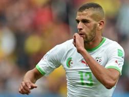 Islam Slimani, attaccante dello Sporting Lisbona, esulta dopo l'1-0. Afp