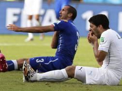 Giorgio Chiellini con Luis Alberto Suarez durante Italia-Uruguay. Epa