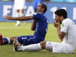 Luis Suarez dopo il morso a Giorgio Chiellini. Epa