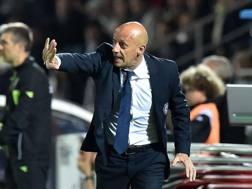 L'allenatore del Cesena Domenico Di Carlo. Getty Images