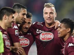 I giocatori del Toro festeggiano la goleada contro il Cesena. Ansa