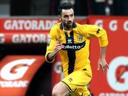 Raffaele Palladino, 31 anni. Forte