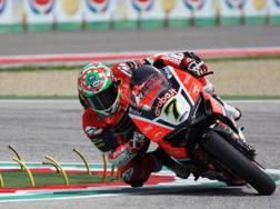 Chaz Davies sulla Ducati a Imola. LaPresse