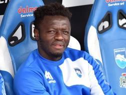 Sulley Ali Muntari, 32 anni, centrocampista ghanese del Pescara. Getty Images