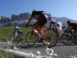 In Italia sono 25 milioni le persone che utilizzano una bicicletta